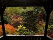 poze imagini gradini cu flori primavara vara toamna 14