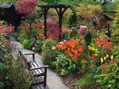 poze imagini gradini cu flori primavara vara toamna 19