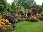 poze imagini gradini cu flori primavara vara toamna 24
