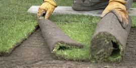 Amenajarea peluzei cu ajutorul rulourilor de gazon