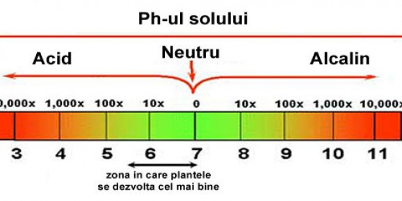 008-ph-sol-gradina
