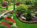 Amenajarea unei gradini cu flori in mijlocul peluzei de gazon