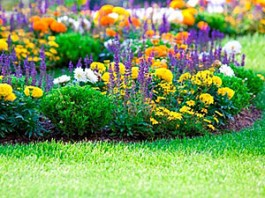 amenajare gradini cu flori