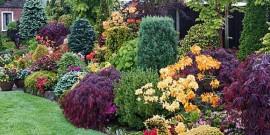 Gradina cu flori superba primavara vara toamna iarna