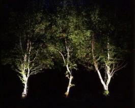 efecte iluminat gradina