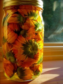 borcan de sticla cu galbenele