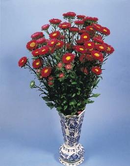 flori pentru vaze imagini