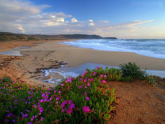 cele mai frumoase peisaje de primavara