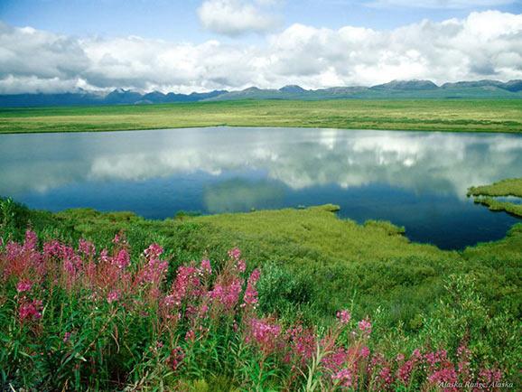 fotografii frumoase natura superba