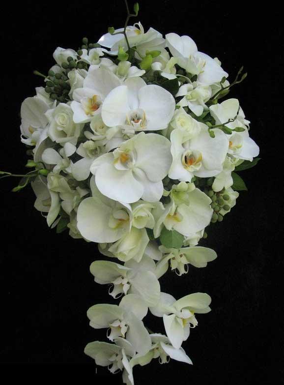 orhidee albe in ciorchine flori