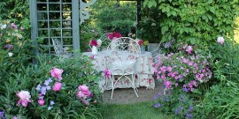 gradina inconjurata de trandafiri