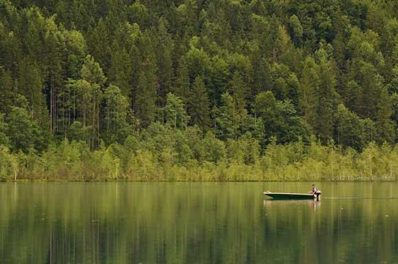 peisaj de vara cu o barca pe lac