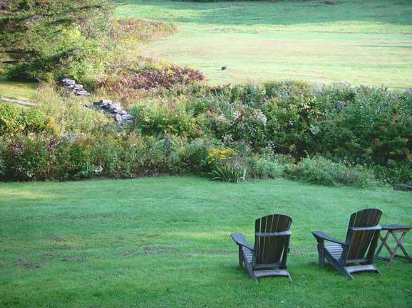 doua scaune in fata unui peisaj de vara
