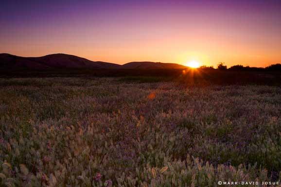 Apus de soare spectaculos peisaj de vara