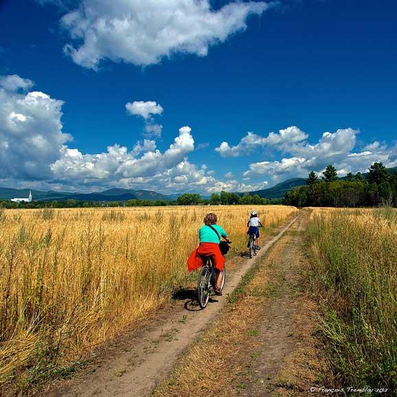 Drumetie cu bicicleta in timpul verii pe drumuri de tara