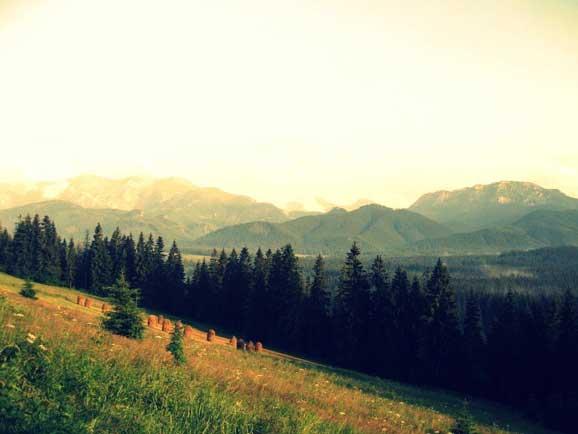 Peisaj de vara la munte