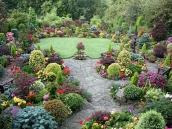 poze imagini gradini cu flori primavara vara toamna 3