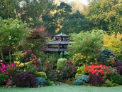 poze imagini gradini cu flori primavara vara toamna 10