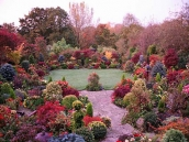 poze imagini gradini cu flori primavara vara toamna 12