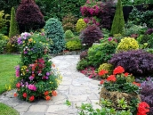 poze imagini gradini cu flori primavara vara toamna 25