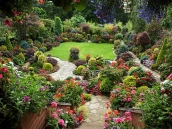 poze imagini gradini cu flori primavara vara toamna 26